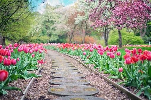 Que faire pour avoir un beau jardin à la maison?